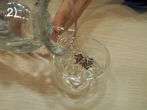 浸種子簡易8式