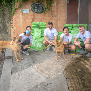 Buddy Bites: The Subscription-Based Dog Food Service That Gives Back