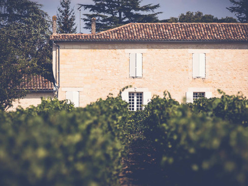 Meet Bakus Cellars, a Premium Distributor of Quality Family-Owned French Wines