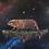 "Thumbnail: ""Galactic Republic' Gallery Wrap Canvas Print"