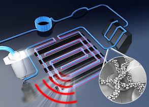 Nanoscale(back)_final.jpg