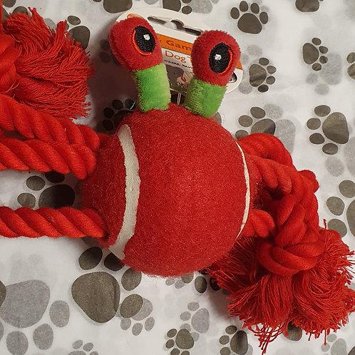 Knotty dog toy