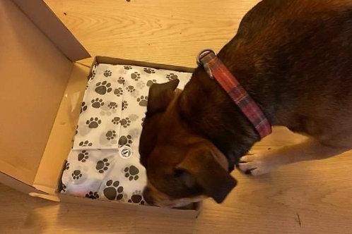 Natural Dog Treat Box