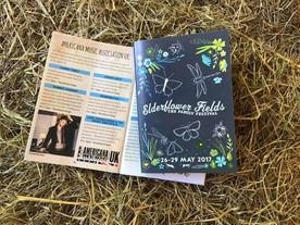 Elderflower Fields Fest, Sussex, 26/5/17