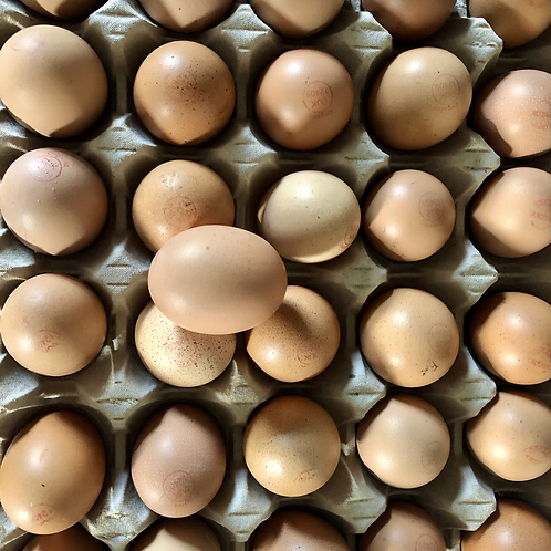 Pullet eggs (tray of 30eggs)