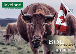Sol Komfort Lakeland Canada (5)