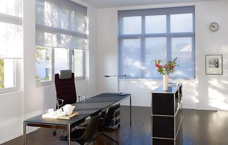 Sol_komfort_Interiors_roller.jpg