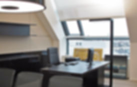 Sol_komfort_Interiors_skylight.JPG