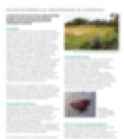 milieuvriendelijk grasmaaien in Elderhof