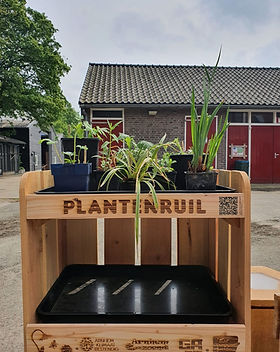 Plantenruilkast 4 (002).jpg
