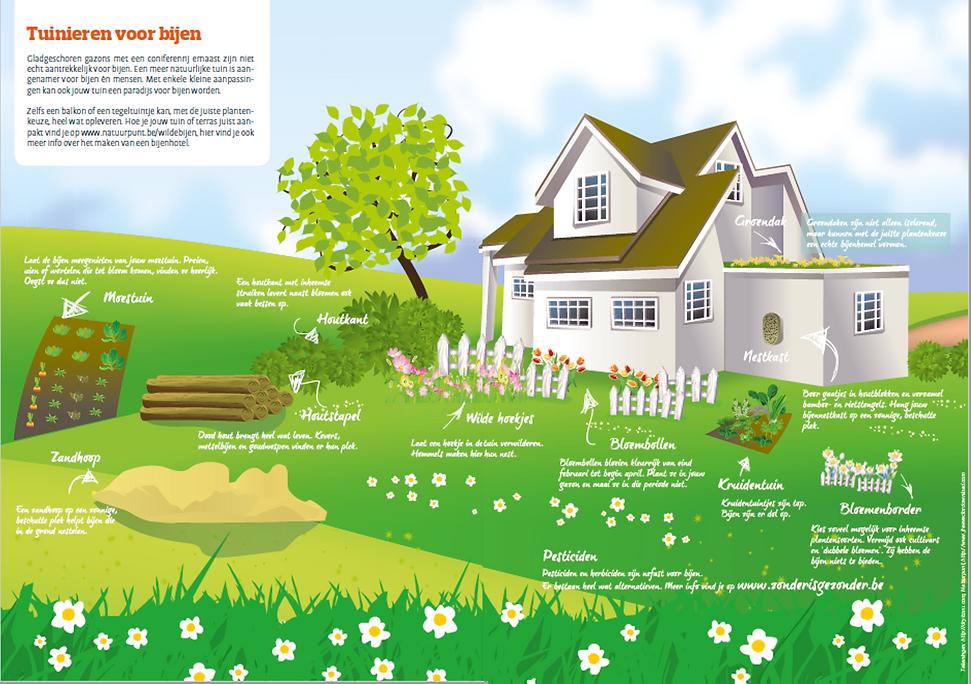elementen tuin voor bijen.png