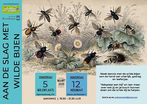 poster bijeenkomst wilde bijen4-2-2020.p
