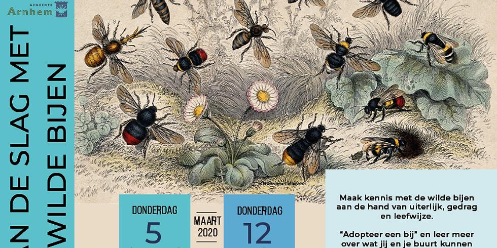 Bijeenkomst Aan de slag met Wilde bijen