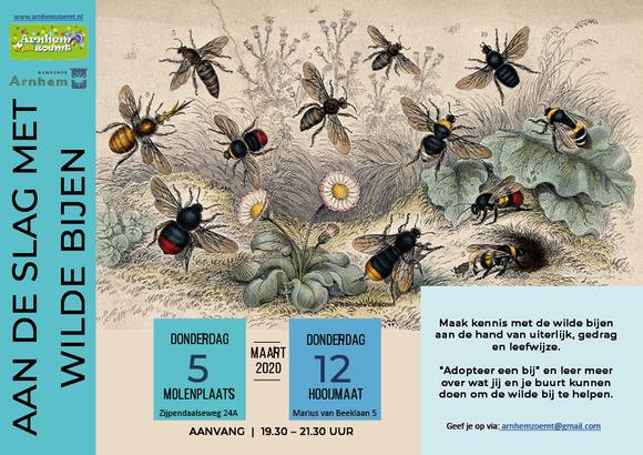 Bijeenkomst over wilde bijen op 5 en 12 maart