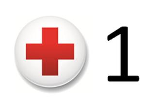 Add a Lifeguard (3 hours)
