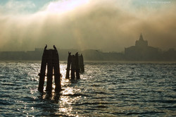personal works laure jacquemin best venice carnaval photography (57).jpg