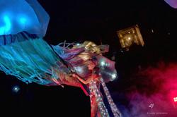 Meilleur photos Carnaval de Venise 2018 laure jacquemin (106)