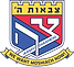 Tzivos-Hashem-Logo-color-for-web.png