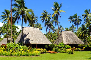 Traditional bure with thatched roof, Van