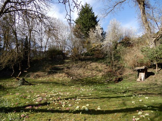 Greinerhofpark