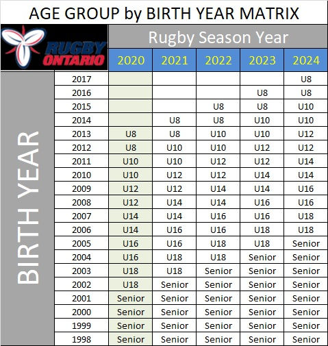Age group by birth year matrix.jpg