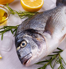 raw-sea-bream-fish-PCNRA3A_edited.jpg