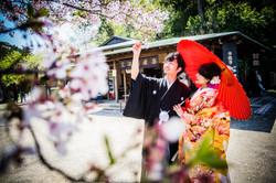 和装・色打掛・前撮り・ロケーション・三渓園・桜