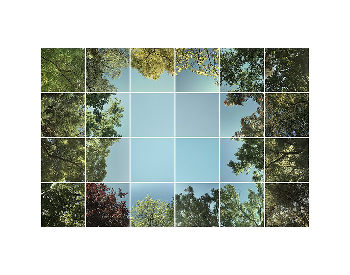 Clearing - Large print