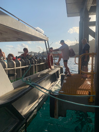 Nemo getting on boat.jpeg