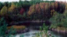 wayne national forest ohio scenery trees lake pretty
