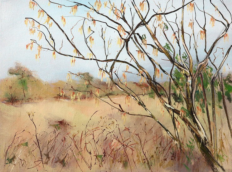 "Richard Brinley ""Catkins , early spring"" mini print"