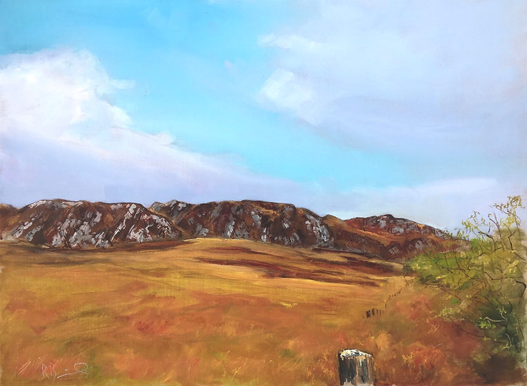 "Richard Brinley ""The Clints of Dromore "" Original oil on canvas"