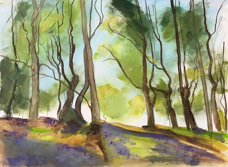 """ Bluebell Wood study ""  Richard Brinley mini Giclee print"
