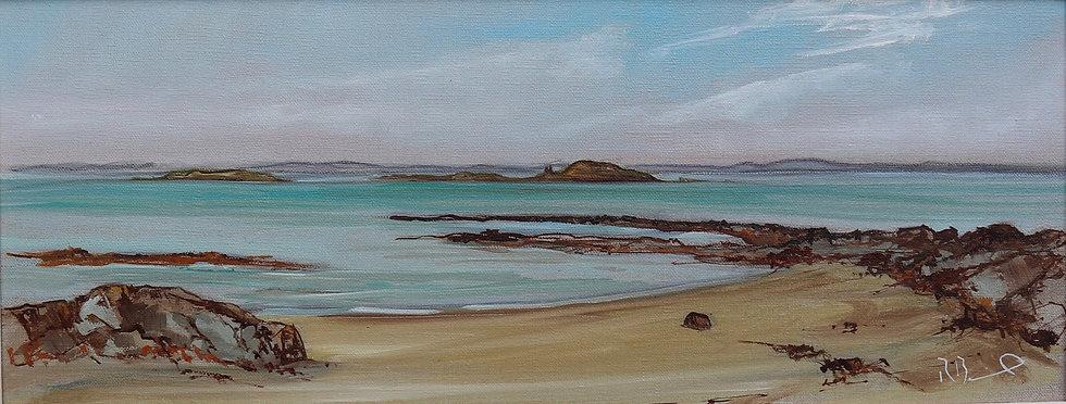 "Richard Brinley  ""between Sandgreen and Carrick"" 20 x 50 cm oil on canvas"