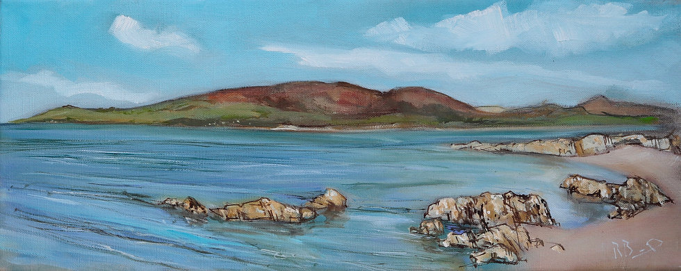 "Richard Brinley  ""Across Fleet Bay , Carrick"" 20 x 50 cm oil on can"