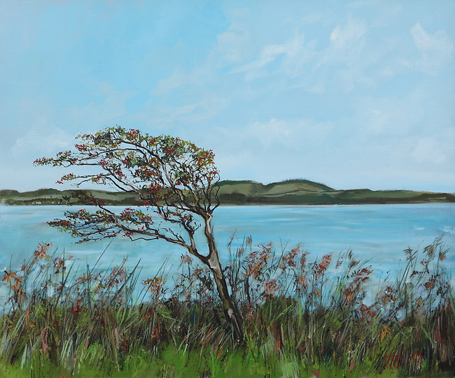 """Richard Brinley """"Kirkcudbright Bay Hawthorn """" 50cm x 60cm"""
