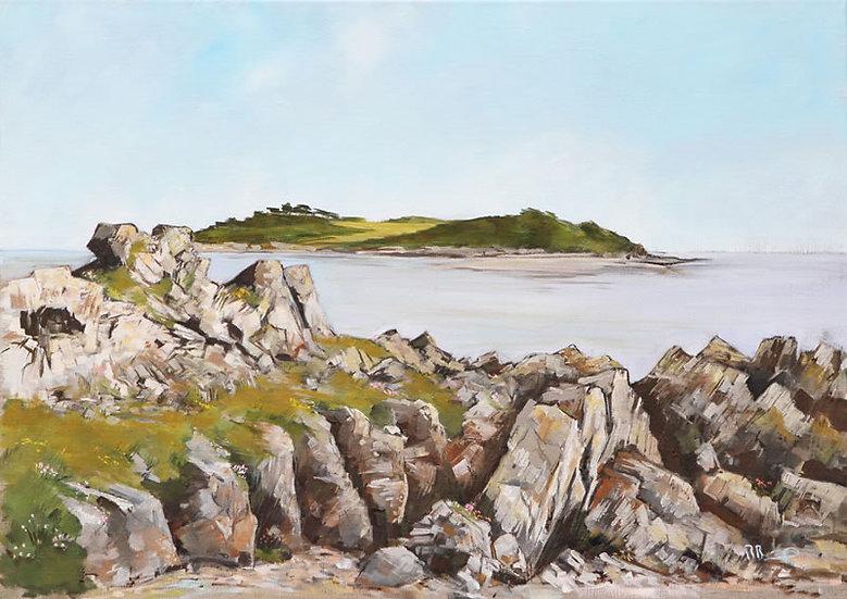 "Richard Brinley ""Ardwall Isle , Carrick Shore"" Giclee Print"