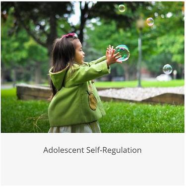 Adolescent Self-Regulation.jpg