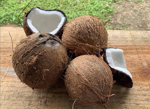 Coco seco inteiro (unidade)