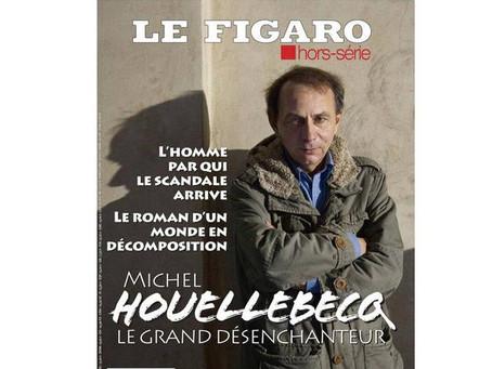 Hors série Houellebecq reprenant le travail des deux livres d artistes.