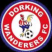Dorking_Wanderers_FC 3.png