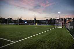 Meadowbank early evening.jpg