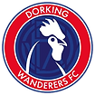 Dorking_Wanderers_F_edited_edited.png