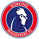 Dorking_Wanderers_F_edited_edited.png
