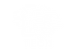 brain_white_main logo.png