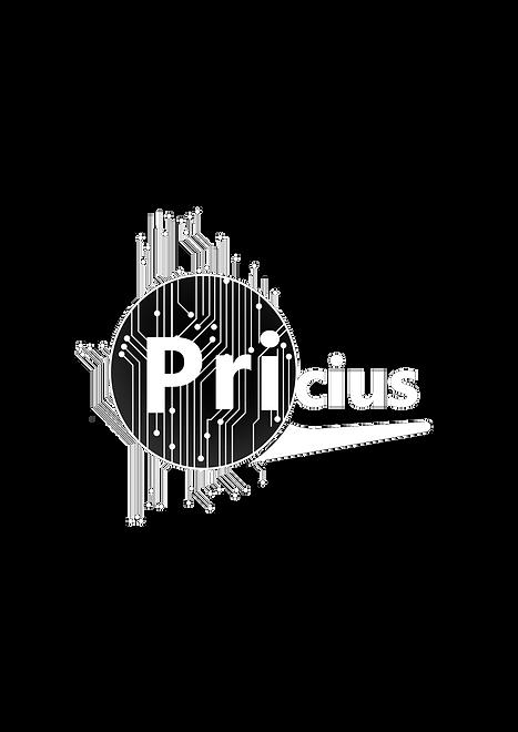 Pricius - main logo-full -inverted.png