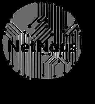 NetNous logo