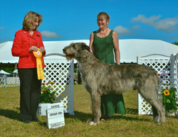 Barrie Kennel Club 2014