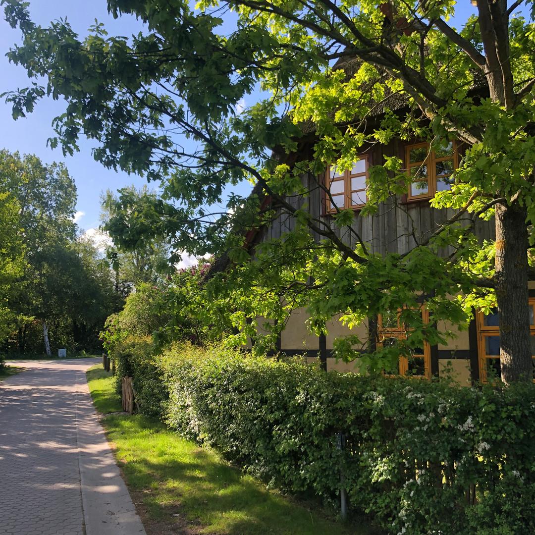 Fuchsbau-Ferienhaus