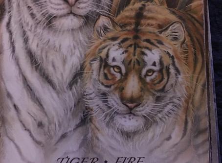 Tiger - Fire